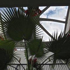Отель Riad Dari Марокко, Марракеш - отзывы, цены и фото номеров - забронировать отель Riad Dari онлайн бассейн
