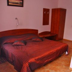 Гостиница Легенда Петропавловка Стандартный номер с различными типами кроватей фото 8