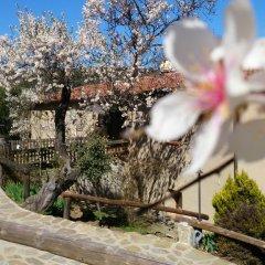 Отель Valdolázaro Испания, Бельвис-де-ла-Хара - отзывы, цены и фото номеров - забронировать отель Valdolázaro онлайн фото 3