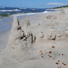 Гостиница Золотая Орхидея пляж