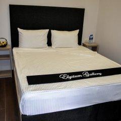 Elysium Gallery Hotel 3* Номер Комфорт с двуспальной кроватью фото 8