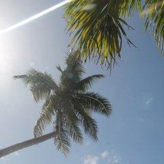 Hotel Don Michele Бока Чика пляж фото 2