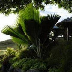Отель Palmlea Farms Lodge & Bures фото 6