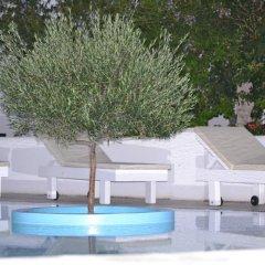 Veggera Hotel бассейн фото 2