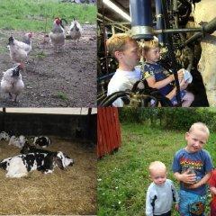 Отель Hveddegaard Farm Holiday детские мероприятия фото 2