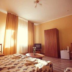 Гостиница Edelweis комната для гостей фото 4