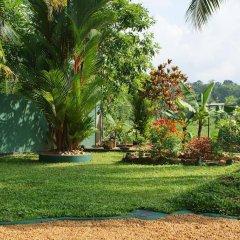 Отель Lanka Rose Guest House Шри-Ланка, Берувела - отзывы, цены и фото номеров - забронировать отель Lanka Rose Guest House онлайн фото 13