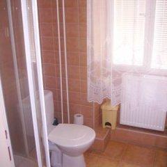 Отель Zlaty Jelen Апартаменты с различными типами кроватей фото 10