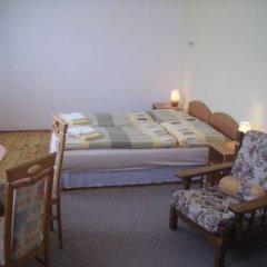 Отель Zlaty Jelen Апартаменты с различными типами кроватей фото 13
