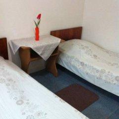Гостевой дом Простор Номер категории Эконом с двуспальной кроватью