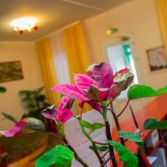 Гостиница Уют Внуково Полулюкс фото 21
