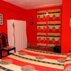 Отель B&B Paradiso a 4 Zampe Стандартный номер фото 21
