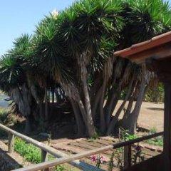 Отель Vivecanarias Rural Бунгало с разными типами кроватей фото 27