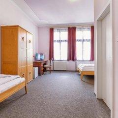 Отель Penzion U Salzmannu 3* Стандартный номер фото 6