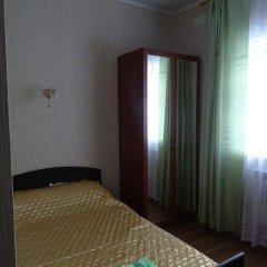 Мини-Отель Никольская Стандартный номер с различными типами кроватей фото 9