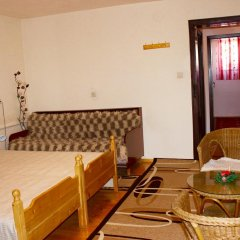 Отель Nina 1 Rooms Болгария, Банско - отзывы, цены и фото номеров - забронировать отель Nina 1 Rooms онлайн комната для гостей фото 2