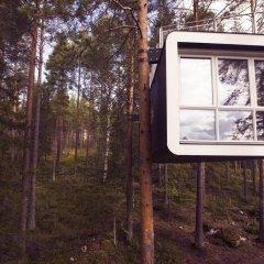 Tree Hotel 5* Бунгало с различными типами кроватей