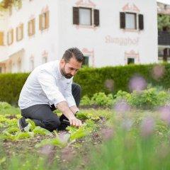 Hotel Ansitz Rungghof Аппиано-сулла-Страда-дель-Вино приотельная территория