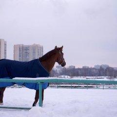Парк Отель Битца Москва приотельная территория