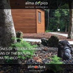 Отель Alma do Pico Португалия, Мадалена - отзывы, цены и фото номеров - забронировать отель Alma do Pico онлайн спортивное сооружение