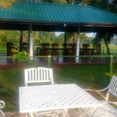 Отель Rajarata Lodge Шри-Ланка, Анурадхапура - отзывы, цены и фото номеров - забронировать отель Rajarata Lodge онлайн фото 15