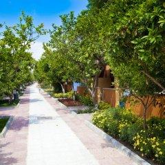 Hotel Ozlem Garden - All Inclusive фото 11