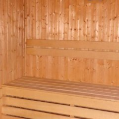 Отель Pirin River Ski & Spa сауна