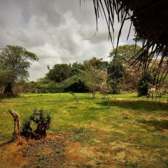 Отель Yakaduru Safari Village Yala фото 9