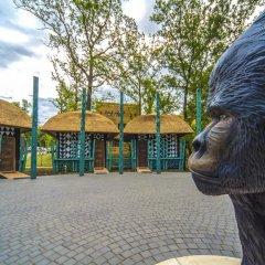 Отель Bambara Hotel Premium Венгрия, Силвашварад - отзывы, цены и фото номеров - забронировать отель Bambara Hotel Premium онлайн парковка