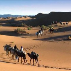 Отель Le Sauvage Noble Марокко, Загора - отзывы, цены и фото номеров - забронировать отель Le Sauvage Noble онлайн пляж