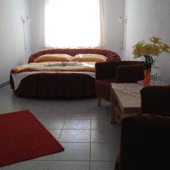 Hotel Timon комната для гостей фото 4