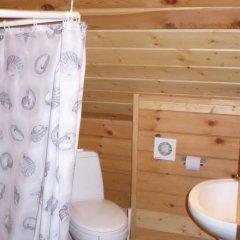 Гостиница Вишневый Сад Номер категории Эконом с различными типами кроватей фото 3