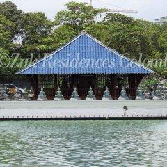 Отель Zak Residence Шри-Ланка, Коломбо - отзывы, цены и фото номеров - забронировать отель Zak Residence онлайн приотельная территория фото 2