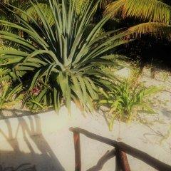 Отель Balamku Inn on the Beach фото 4