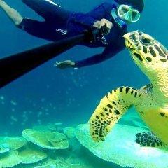 Отель Express Inn Мальдивы, Мале - отзывы, цены и фото номеров - забронировать отель Express Inn онлайн бассейн