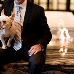 Отель Loden Vancouver Канада, Ванкувер - отзывы, цены и фото номеров - забронировать отель Loden Vancouver онлайн с домашними животными