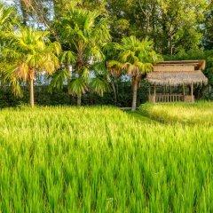 Отель Naina Resort & Spa Таиланд, Пхукет - 3 отзыва об отеле, цены и фото номеров - забронировать отель Naina Resort & Spa онлайн фото 6
