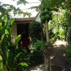 Отель Cabinas Tropicales Puerto Jimenez Ринкон фото 13