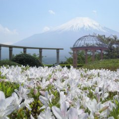 Hotel Mt. Fuji Яманакако помещение для мероприятий