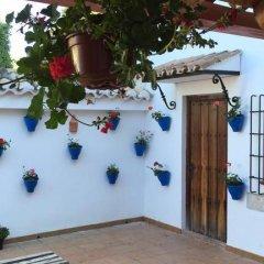 Отель Casa Rural Cabeza Alta Алькаудете питание фото 2
