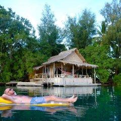 Oravae Island Cottages in Kukundu, Solomon Islands from 297$, photos, reviews - zenhotels.com outdoors photo 2
