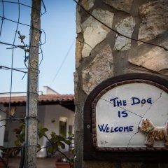 Отель Amalia Siino delle Rose Италия, Чинизи - отзывы, цены и фото номеров - забронировать отель Amalia Siino delle Rose онлайн фото 9