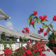 Отель Xiamen International Seaside Hotel Китай, Сямынь - отзывы, цены и фото номеров - забронировать отель Xiamen International Seaside Hotel онлайн фото 5