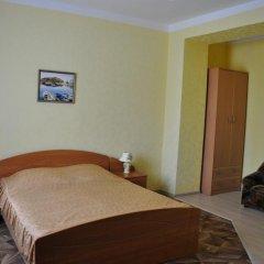 Гостевой дом Ретро Стиль Номер Делюкс с различными типами кроватей фото 4