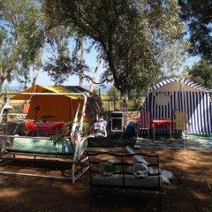 Azmakbasi Camping Турция, Атакой - отзывы, цены и фото номеров - забронировать отель Azmakbasi Camping онлайн фото 3