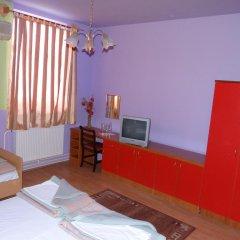 Отель Naša Tvrđava Guest Accommodation Нови Сад удобства в номере фото 2