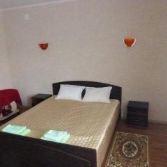 Мини-Отель Никольская Стандартный номер с двуспальной кроватью фото 3