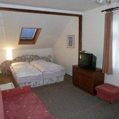 Отель Penzion Holiday комната для гостей фото 5
