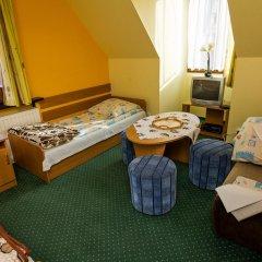 Отель Willa Marysieńka Стандартный номер фото 14