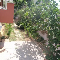 Aloe Apart Hotel фото 10